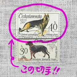 1103_2017_02